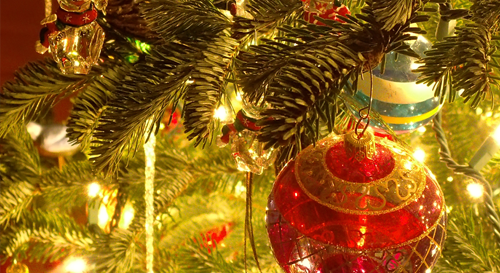 WasteCare Christmas