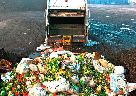 Food-waste-pic